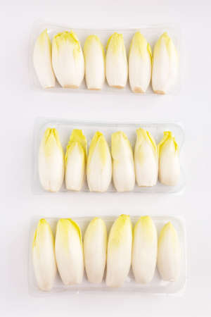 many endives salad roots, chicory on white background, top view, spring food concept