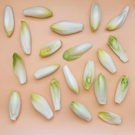 many raw endives salad roots or chicory on light orange background, top view, healthy organic meal concept Banque d'images