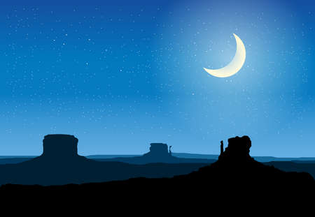 desert landscape: arizona rocks valley at night vector illustration