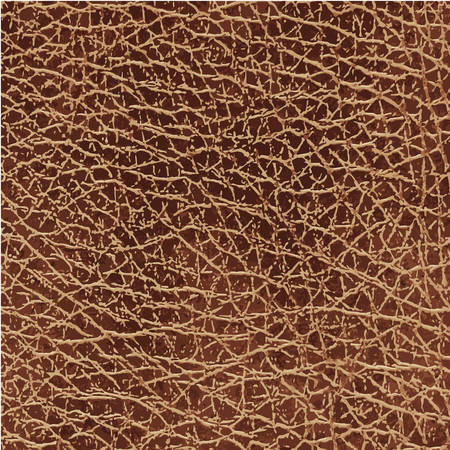 cowhide: light Brown leather texture vector illustration image