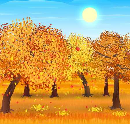 Autumn nature landscape with forest. vector illustration