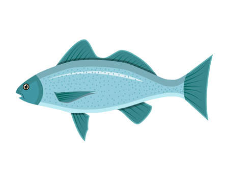 Generic sea fish