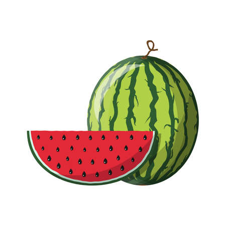 Watermelon and red slice with black seeds Illustration