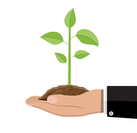 Tree with leaves and soil in hand. Sprout for planting. Eco concept. Gardening, agriculture, plantings. Vector illustration in flat style Stock Illustratie