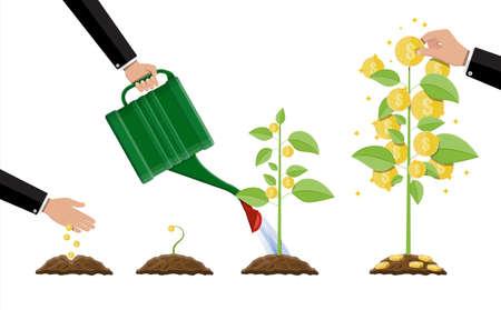 Rosnące drzewo pieniędzy. Etapy wzrostu. Złote monety na gałęziach. Symbol bogactwa. Inwestowanie, inwestowanie. Sukces w interesach. Ilustracja wektorowa płaski. Ilustracje wektorowe