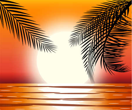 Silhouette of palm tree on beach