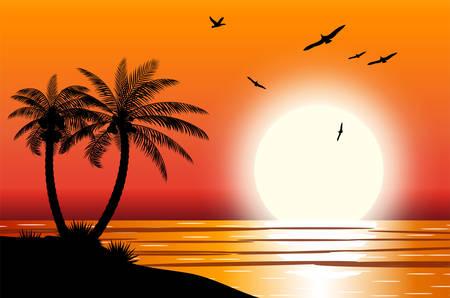 Silhouet van palmboom op strand. Zon met weerspiegeling in water en meeuwen. Zonsondergang in tropische plaats. Vector illustratie