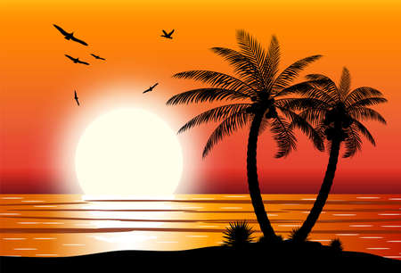 Silhouette of palm tree on beach. Sun with reflection in water and seagulls. Sunset in tropical place. Vector illustration Illustration
