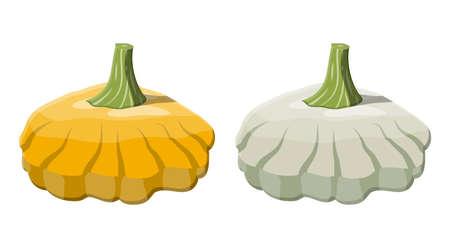 Orange and green bush pumpkin vegetable.