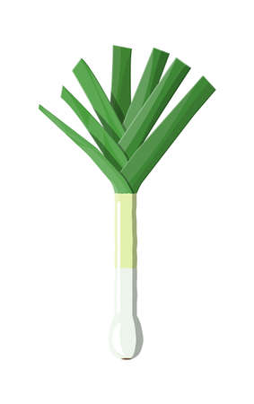 Ripe vegetable bitter onion with green stem.
