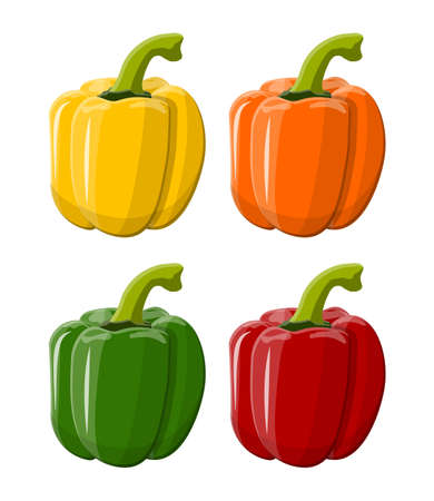 Pepper bell vegetable isolated on white background. Green red yellow orange pepper bell from farm. Organic healthy food. Vector illustration in flat style Illustration