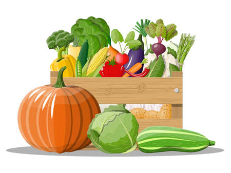 Wooden box full of vegetables. Onion, eggplant, cabbage, pepper, pumpkin, cucumber, tomato carrot and other vegetables. Organic healthy food. Vegetarian nutrition. Vector illustration in flat style Illustration