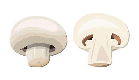 Ripe mushroom champignon Illustration