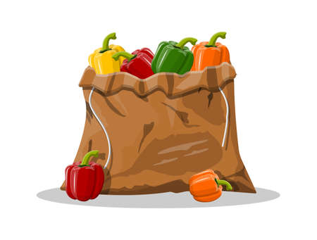 Pepper bell vegetable in canvas bag isolated on white background. Green red yellow orange pepper bell from farm. Organic healthy food. Vector illustration in flat style