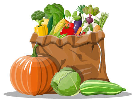 Canvas bag full of vegetables. Farming fresh food, organic agriculture products. Autumn harvest. Onion, cabbage, pepper, pumpkin, cucumber, tomato and other vegetables. Vector illustration flat style