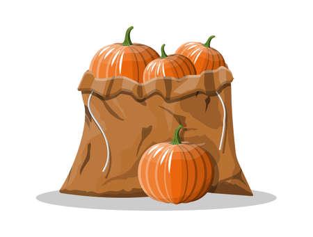Orange pumpkin vegetable in canvas bag. Halloween pumpkin isolated on white background. Autumn harvest. Vector illustration in flat style