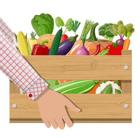 Wooden box full of vegetables in hand. Onion, eggplant, cabbage, pepper, pumpkin, cucumber, tomato carrot other vegetables. Organic healthy food. Vegetarian nutrition. Vector illustration flat style