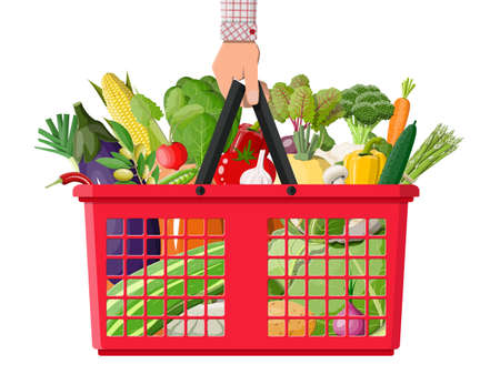 Plastic shopping basket full of vegetables in hand. Farming fresh food, organic agriculture products. Onion, cabbage, pepper, pumpkin, cucumber, tomato other vegetables. Vector illustration flat style