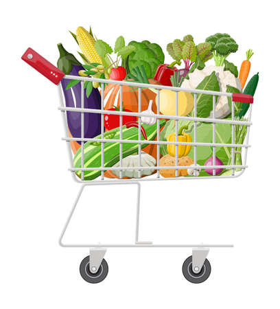 Metal shopping cart full of vegetables. Farming fresh food, organic agriculture products. Onion, cabbage, pepper, pumpkin, cucumber, tomato and other vegetables. Vector illustration flat style Illustration