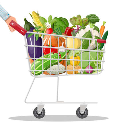Metal shopping cart full of vegetables in hand. Farming fresh food, organic agriculture products. Onion, cabbage, pepper, pumpkin, cucumber, tomato and other vegetables. Vector illustration flat style