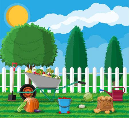 Garden harvest with vegetables and different gardening equipment, tools. Wheelbarrow shovel bucket. Wooden fence, tree. Organic healthy food. Fresh farming vegetables. Vector illustration flat style Illustration
