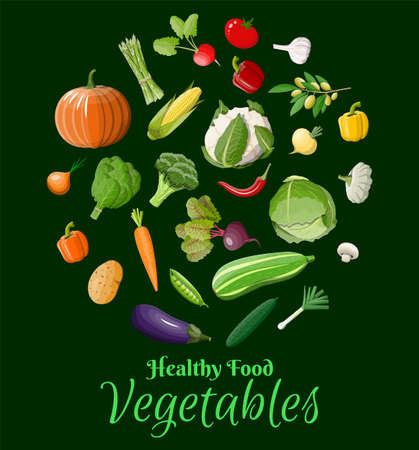 Big vegetable icon set. Onion, eggplant, cabbage, pepper, pumpkin, cucumber, tomato carrot and other vegetables. Organic healthy food. Vegetarian nutrition. Vector illustration in flat style