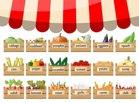 Wooden supermarket boxes with vegetables. Market stall with awning. Fresh organic food products. Cucumber tomato pumpkin garlic onion carrot corn pepper. Vector illustration in flat style