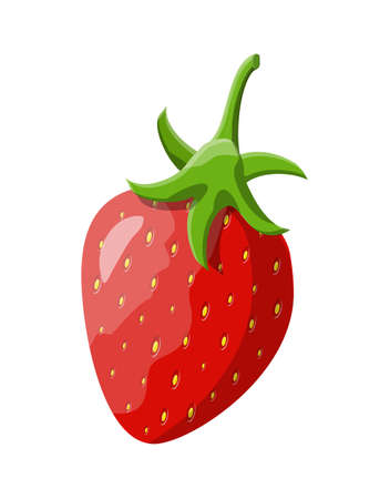 Red berry strawberry isolated white. Illustration