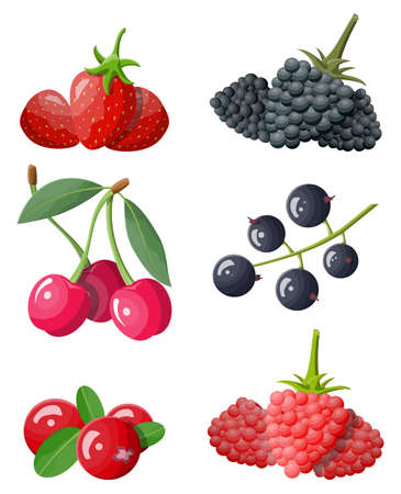 Berry icon set. Stock Vector - 118860132