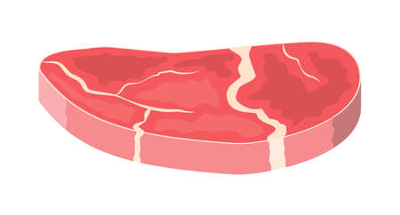 Beef tenderloin. Pork knuckle. Slice of steak, fresh meat. Uncooked pork chop. Vector illustration in flat style