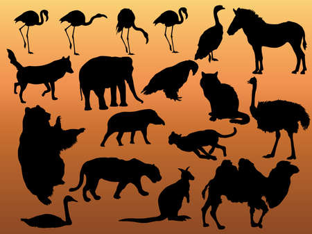 Vector black silhouette of animals.  Vector