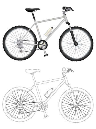 Vector image of mountain bike isolated on white background.