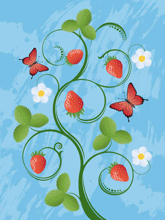 Summer background with a strawberry Vector