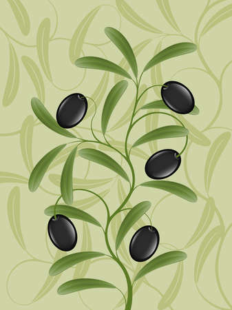 olive leaves: Floral background with an olive branch
