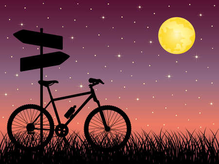 night road: Night landscape with a bike Illustration