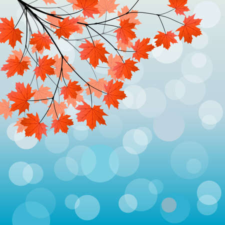 Autumn background with a maple branch
