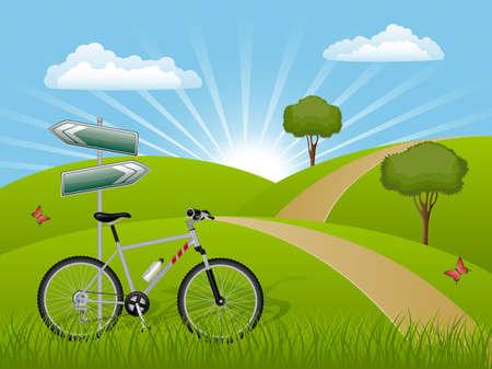 mountain meadow: Paisaje de verano con una bicicleta