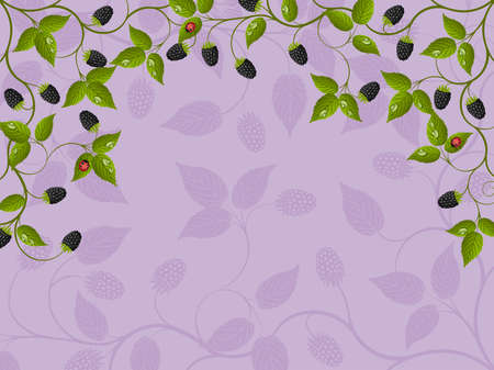 brambleberry: Floral background with a blackberry