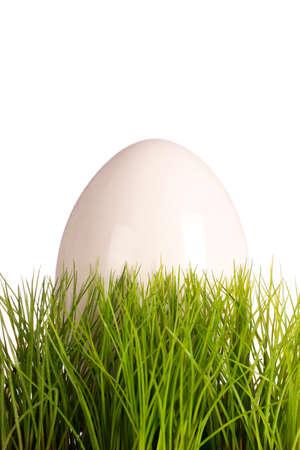 easteregg: White easteregg in easter grass
