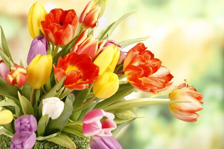 Floralbouquet of colourful tulips Stock Photo