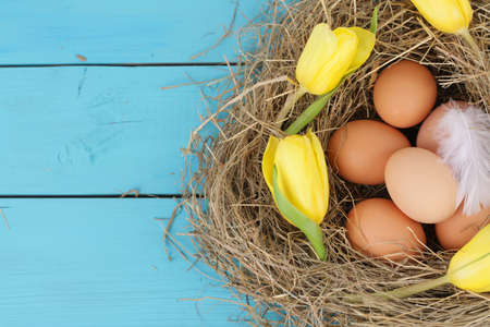 countrylife: natural nest with chicken eggs and tulips