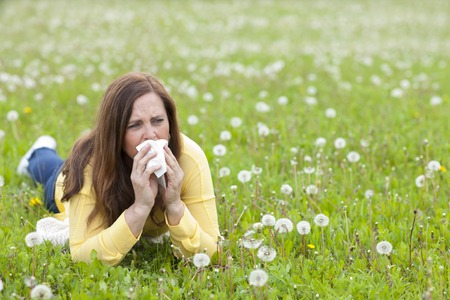 handkerchief: Unhappy middle age woman with hay fever and handkerchief lying in the grass Stock Photo