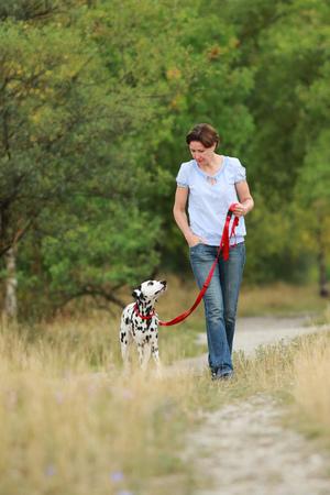 Maduro, mujer, paseos, perro, verano, verde, naturaleza, medio ambiente Foto de archivo - 82608849