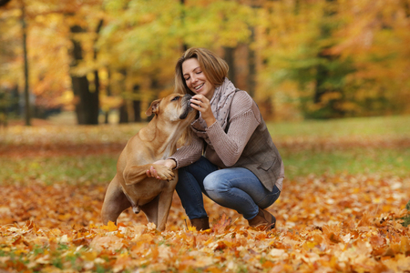 Woman trains her dog in autumn nature