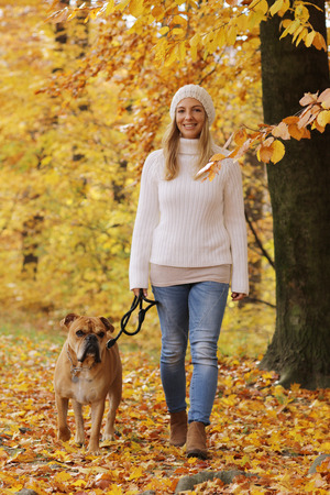 Happy woman with continental bulldog on a walk in an autumnal wood Reklamní fotografie - 111764126