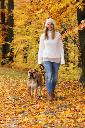 Happy woman with continental bulldog on a walk in an autumnal wood Reklamní fotografie