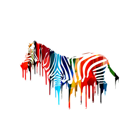zebra: Colorful vector zebra design
