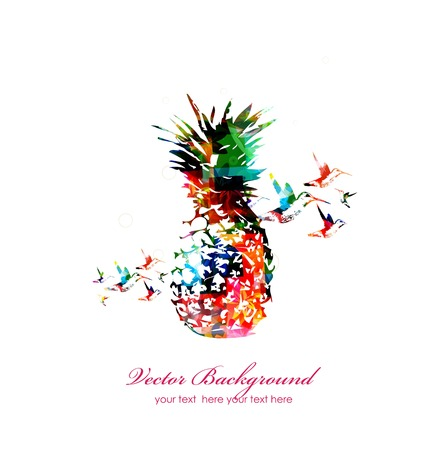 Colorful pineapple with hummingbirds Stock Illustratie