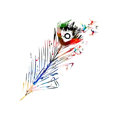 feather vector: Colorful peacock feather vector background with hummingbirds Illustration