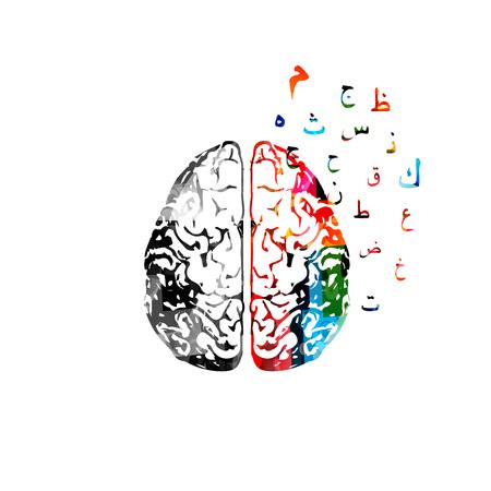 アラビア語書道のシンボルのカラフルな人間の脳。  イラスト・ベクター素材